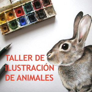 peque ilustracion animal